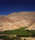 Valle de Elqui, Northern Chile